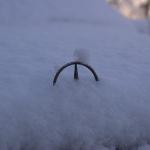 Mercedes est dans la ... neige.