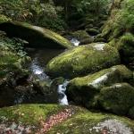Vue de «mon» rocher de Huelgoat
