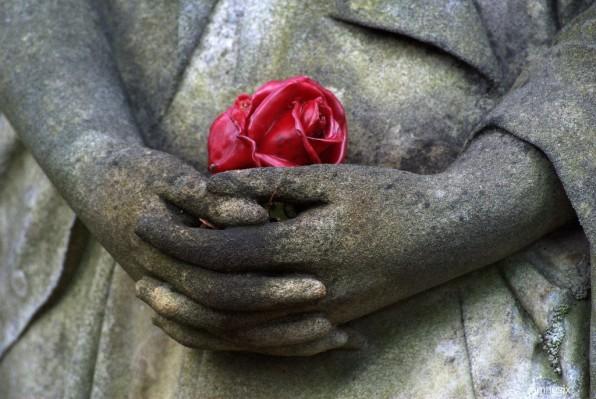 Rose et gris ...